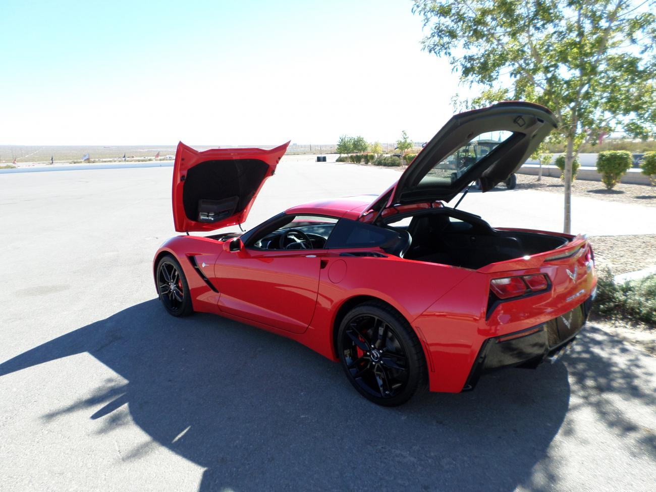 Name:  Las Vegas Corvette 008.jpg